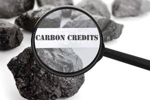 carbon credit scam